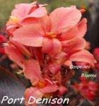 Canna Port Denison