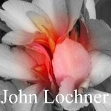 All about the canna John Lochner