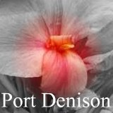 Read about canna Port Denison